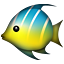 :tropical_fish: